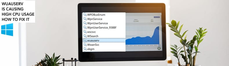 wuauserv is causing high cpu usage