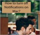 How to turn off Notifications on Mac?